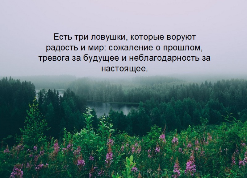 https://millionstatusov.ru/pic/statpic/all/585551e0a762d.jpg