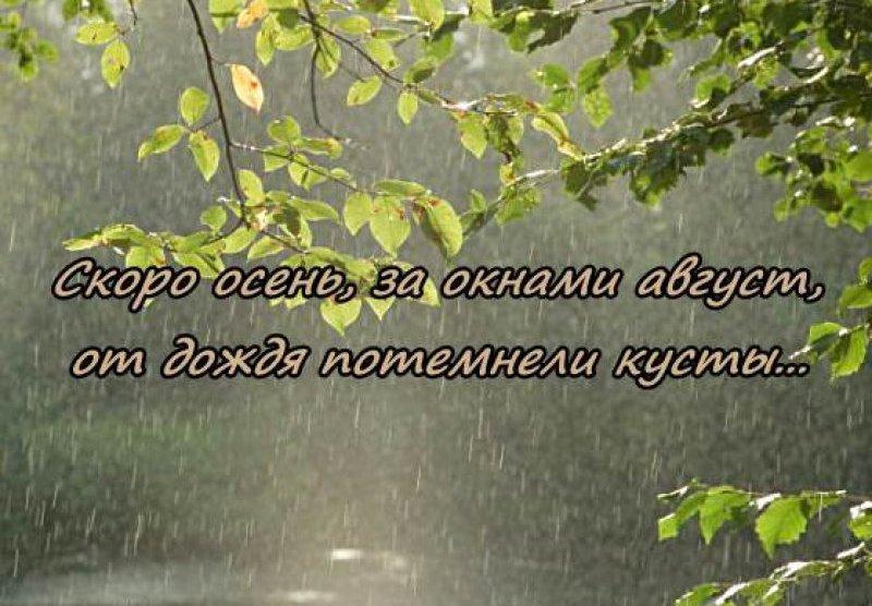 Картинки про дождливую погоду с надписями душевные, крещением крещением господним