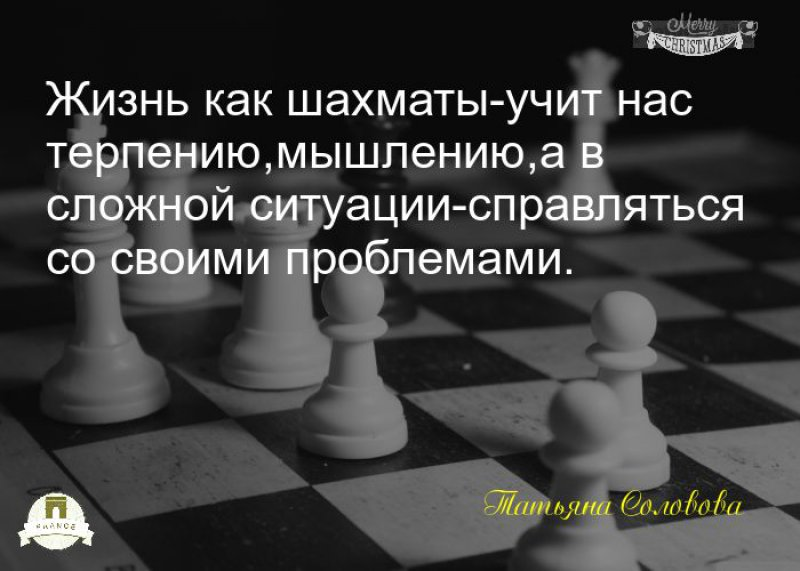 стихи шахматы жизнь чистки