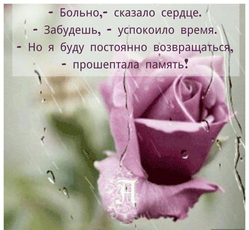 цитата фотографии как память
