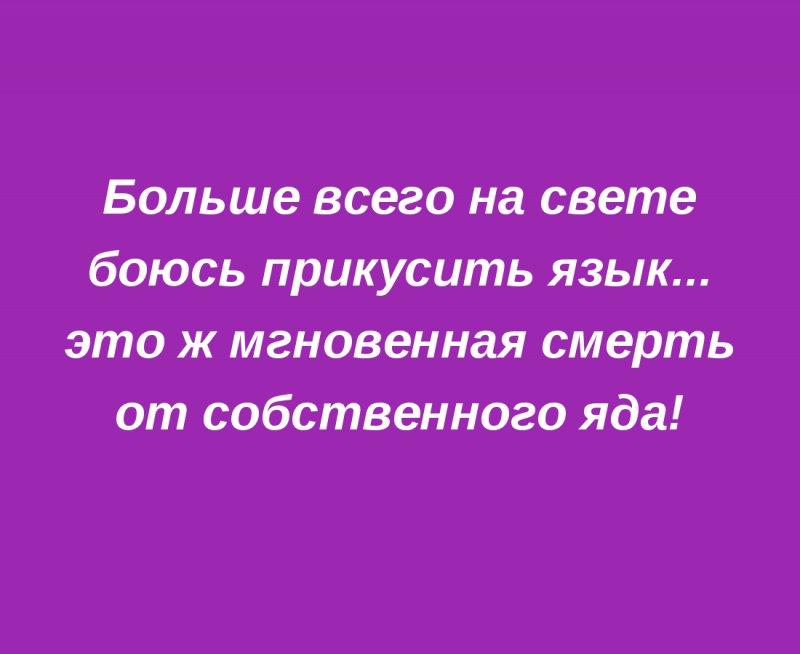 Известные цитаты путина