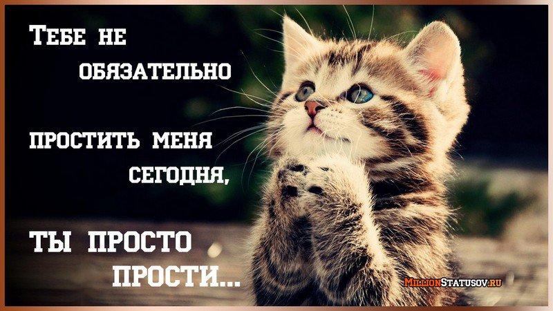 https://millionstatusov.ru/pic/statpic/all4/5a7c245aaca19.jpg