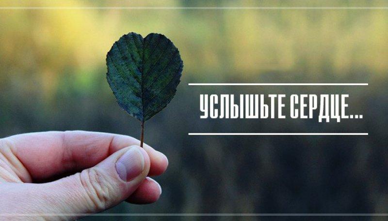 Где можно взять деньги в долг срочно в белгороде от частного лица