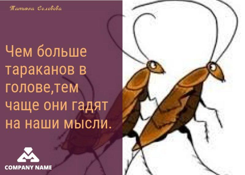 Картинки тараканов в голове с мелком