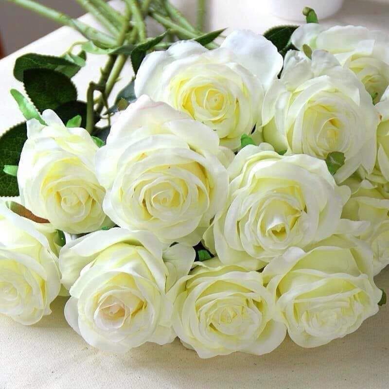 фото картинки большой букет белых роз доброе утро поиск можно через